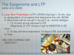 the epigenome and ltp junko et al 2009