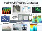fusing obs models databases