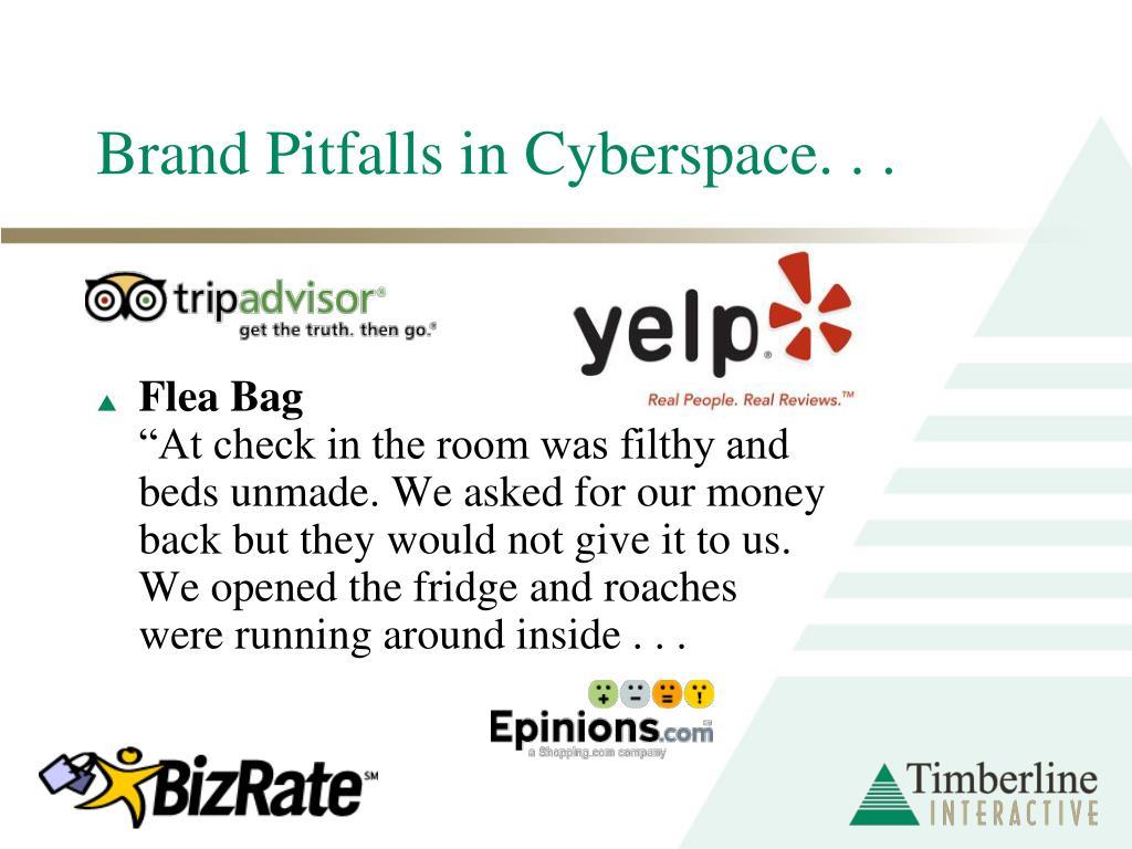 Brand Pitfalls in Cyberspace. . .