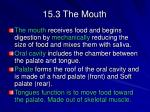 15 3 the mouth