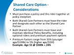 shared care option considerations