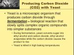producing carbon dioxide co2 with yeast