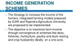 income generation schemes