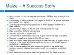 maize a success story