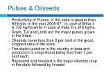 pulses oilseeds
