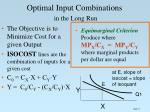optimal input combinations in the long run