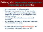 defining ich expressions and practices knowledge and skills that