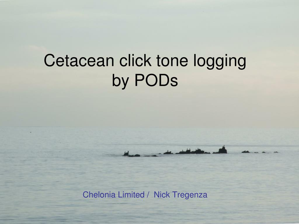 cetacean click tone logging by pods chelonia limited nick tregenza l.