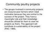 community poultry projects