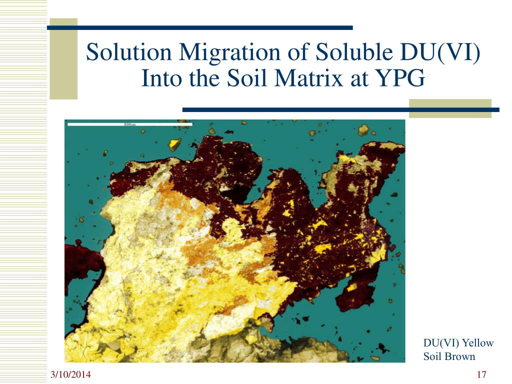 Solution Migration of Soluble DU(VI) Into the Soil Matrix at YPG