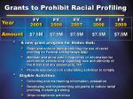 grants to prohibit racial profiling