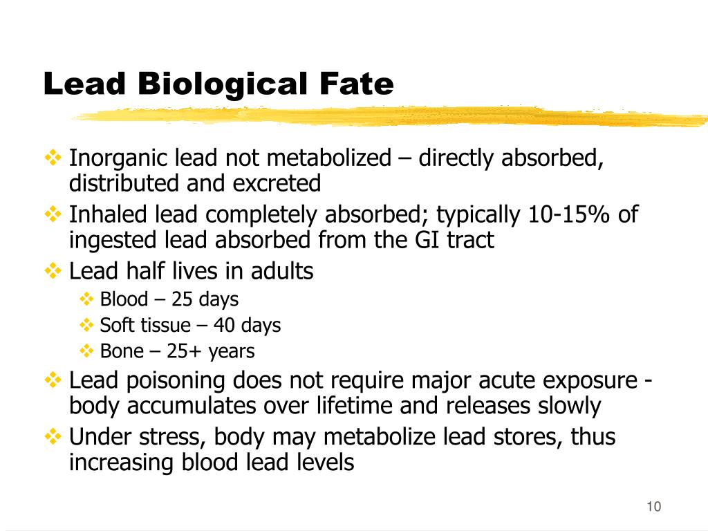 Lead Biological Fate