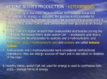ketone bodies production ketogenesis