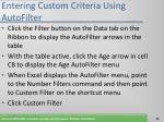 entering custom criteria using autofilter