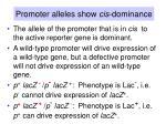 promoter alleles show cis dominance