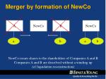 merger by formation of newco