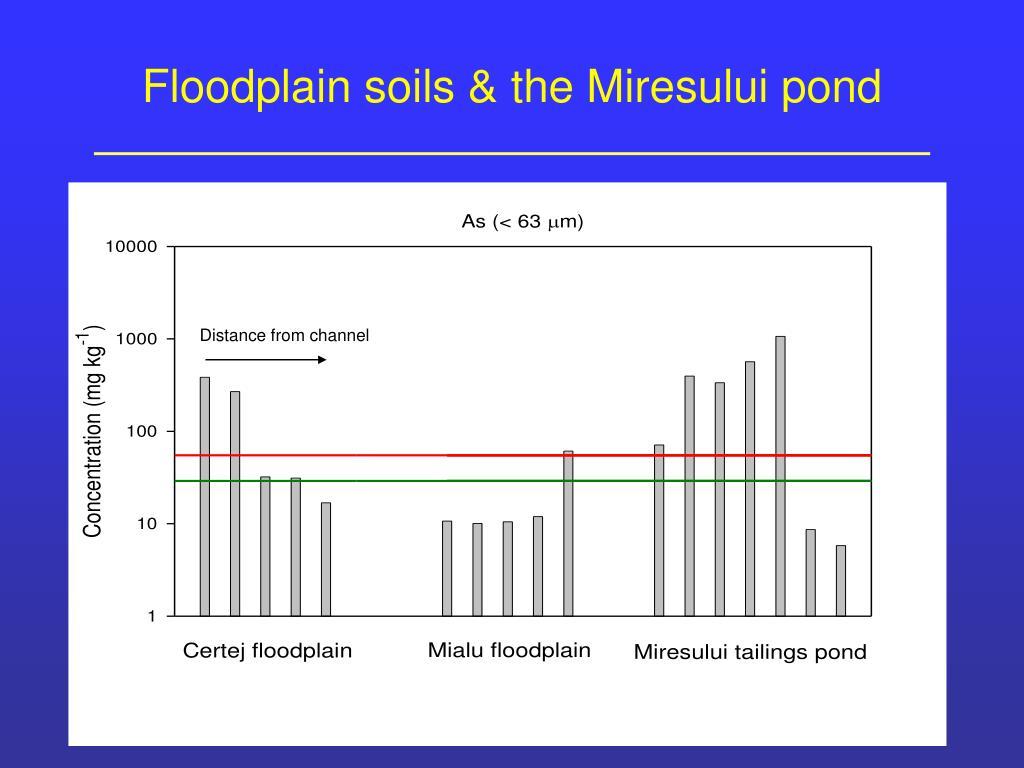 Floodplain soils & the Miresului pond