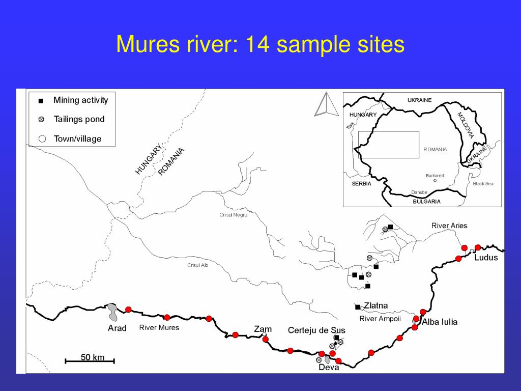 Mures river: