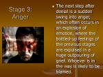 stage 3 anger
