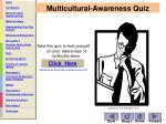 multicultural awareness quiz