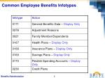 common employee benefits infotypes