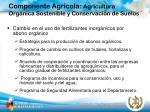 componente agr cola agricultura org nica sostenible y conservaci n de suelos