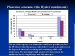pleurotus ostreatus the oyster mushroom18