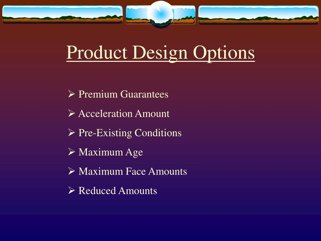 Product Design Options
