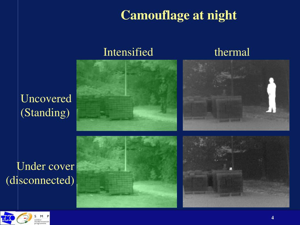 Camouflage at night