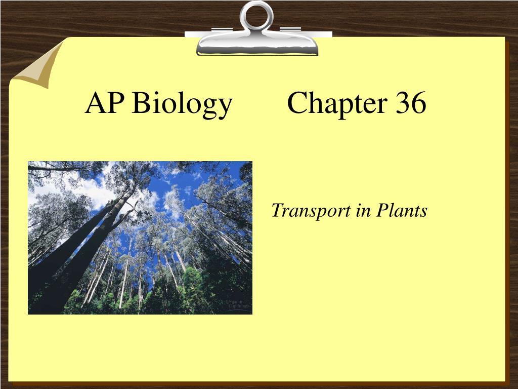 ap biology chapter 36 l.