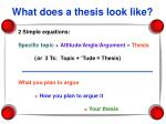 what does a thesis look like