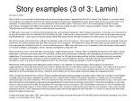 story examples 3 of 3 lamin