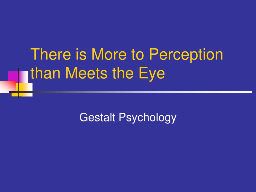 there is more to perception than meets the eye l.