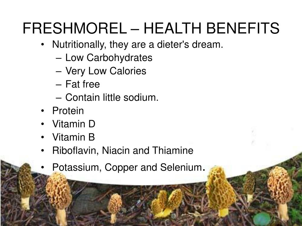 FRESHMOREL – HEALTH BENEFITS