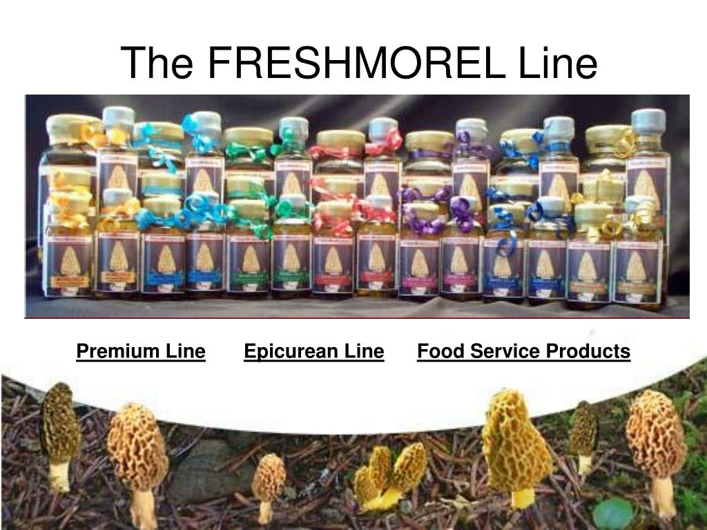 The FRESHMOREL Line