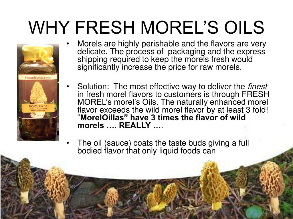 WHY FRESH MOREL'S OILS