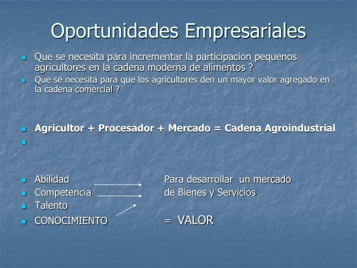 Oportunidades empresariales3