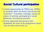 social cultural participation