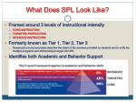 what does spl look like