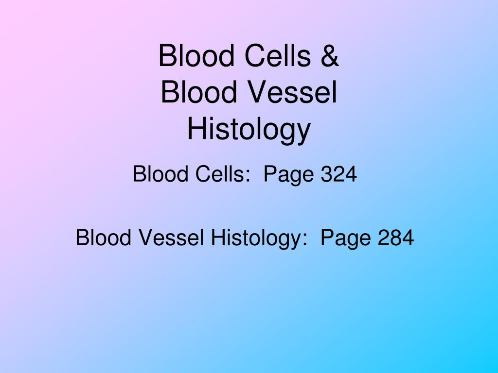 blood cells blood vessel histology l.