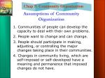 assumptions of community organization