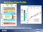 well bore flow profile