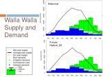 walla walla supply and demand
