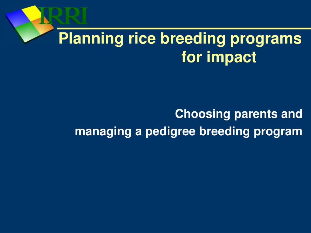 planning rice breeding programs for impact l.