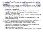 protecting food security through adaptation to climate change