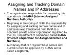 assigning and tracking domain names and ip addresses