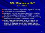 sei who has to file g s 138a 22