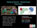 mapping results ketopantoate reductase