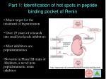 part 1 identification of hot spots in peptide binding pocket of renin