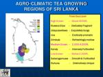 agro climatic tea growing regions of sri lanka